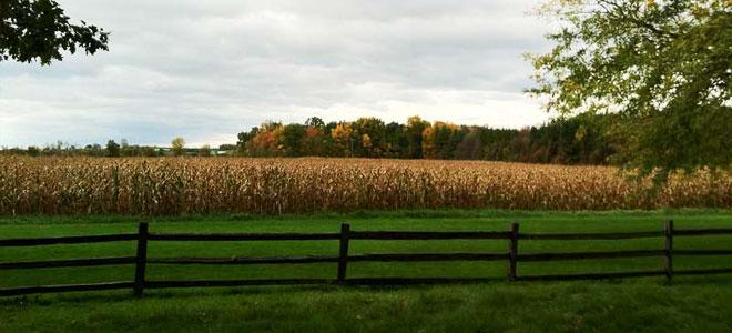 Whitmer farm